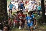 CANLE 2012 012
